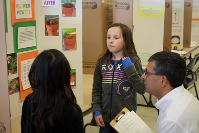 2014 Almond Science Fair